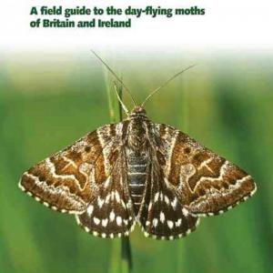 A Field Guide to the Day-Flying Moths of Britain and Ireland